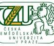 Годовые курсы Чешского языка в Праге при Аграрном университете